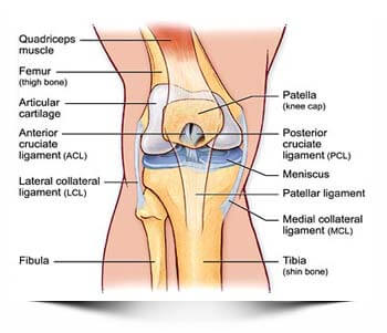 Knee Pain Doctors (Best Rated Sports Injury Specialists